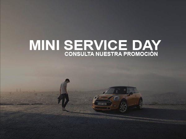Mini service day